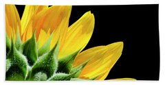Beach Towel featuring the photograph Sunflower Petals by Christina Rollo