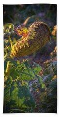 Sunflower Repose Beach Sheet