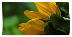 Sunflower Series I Beach Towel