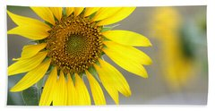 Beach Towel featuring the photograph Sunflower by Sheila Brown