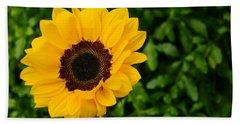 Sunflower Still Life 2 Beach Sheet