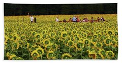 Beach Sheet featuring the photograph Sunflowers Everywhere by John Scates