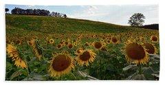Sunflowers Fields  Beach Towel