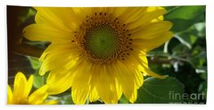 Sunflowers-just Bloomed Beach Towel