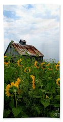Sunflowers Rt 6 Beach Towel