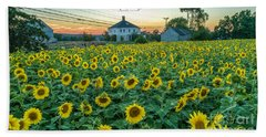 Sunflowers For Wishes  Beach Towel
