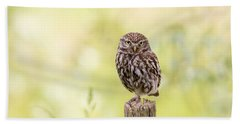 Sunken In Thoughts - Staring Little Owl Beach Towel by Roeselien Raimond