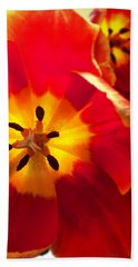 Beach Towel featuring the photograph Sunkissed Tulips by Monique Faella