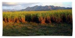 Sunlit Fields In Cuba Beach Sheet