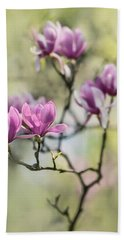 Sunny Impression With Pink Magnolias Beach Sheet