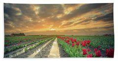 Beach Towel featuring the photograph Sunrise At Tulip Filed After A Storm by William Lee