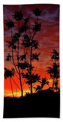 Sunrise Magic Beach Towel
