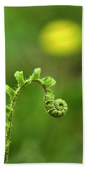 Sunrise Spiral Fern Beach Towel