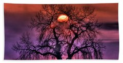 Sunrise Through The Foggy Tree Beach Towel