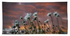 Sunset And Daisies Beach Towel