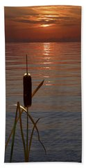 Beach Towel featuring the photograph Sunset Cattail by Judy Johnson