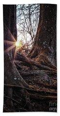 Sunset In The Woods Beach Sheet