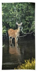 Sunset River Doe Beach Sheet by Judy Johnson