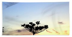 Sunset Seedhead Silhouette  Beach Towel