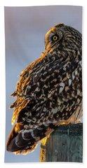 Sunset Short-eared Owl Beach Sheet