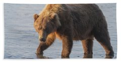 Beach Towel featuring the photograph Sunshine Bear by Chris Scroggins