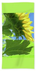 Sunshine In The Garden 19  Beach Towel by Brooks Garten Hauschild