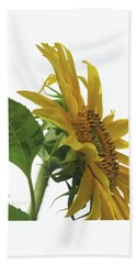 Sunshine In The Garden 25 Beach Towel by Brooks Garten Hauschild
