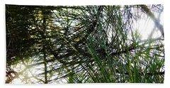 Sunshine Through Pine Needles Beach Sheet