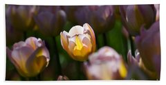 Beach Towel featuring the photograph Sunshine Tulips by Angela DeFrias