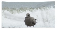 Surf''s  Up  Gull At The Shore Beach Towel