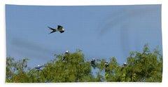 Swallow-tailed Kite Flyover Beach Towel