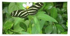 Swallowtail Butterfly On Leaf Beach Towel