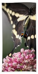Swallowtail Departing Beach Sheet by Mary-Lee Sanders