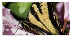 Swallowtail Butterfly Beach Towel by Marilyn Wilson