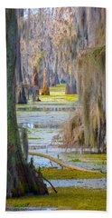 Swamp Curtains In February Beach Towel