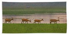 Swamp Deers Beach Towel
