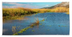 Beach Towel featuring the photograph Swamp by Jivko Nakev