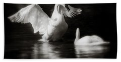 Swan Display Beach Towel
