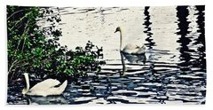 Beach Towel featuring the photograph Swan Family On The Rhine 3 by Sarah Loft