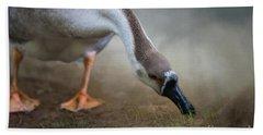 Swan Goose Beach Towel