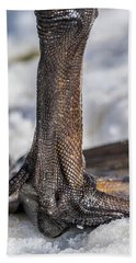 Beach Towel featuring the photograph Swan Leg by Paul Freidlund