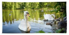 Swans With Chicks Beach Towel