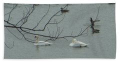 Swans With Geese Beach Towel