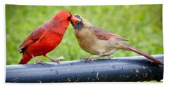 Sweet Cardinal Couple Beach Sheet by Kerri Farley