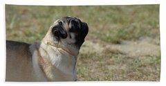 Sweet Face Of A Pug Dog Beach Sheet by DejaVu Designs