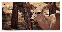 Beach Towel featuring the photograph Sweet Little Mule Deer by Debby Pueschel