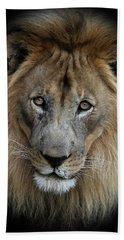 Sweet Male Lion Portrait Beach Towel