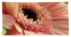 Sweet Peach Gerbera #2 Beach Sheet