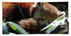 Sweet Sleeping Red Panda Bear Beach Towel