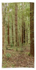 Beach Towel featuring the photograph Sylvan Beauty by Werner Padarin